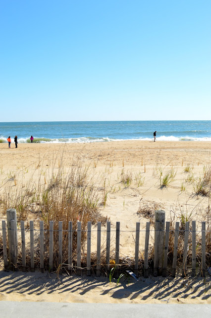 rehoboth-beach-things-to-do