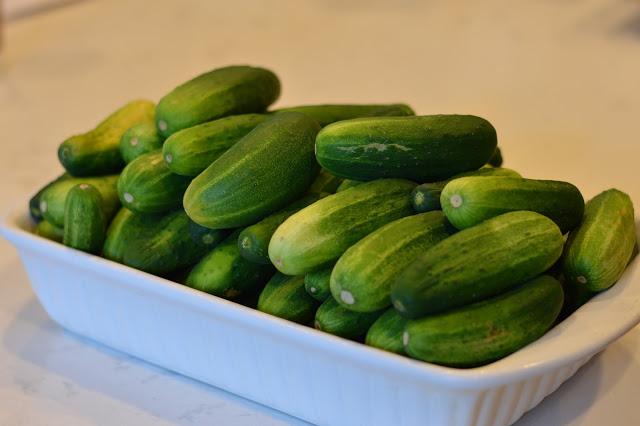 easy-dill-pickle-recipe