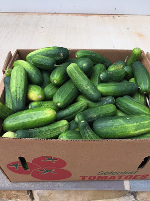 canning-pickles-recipe