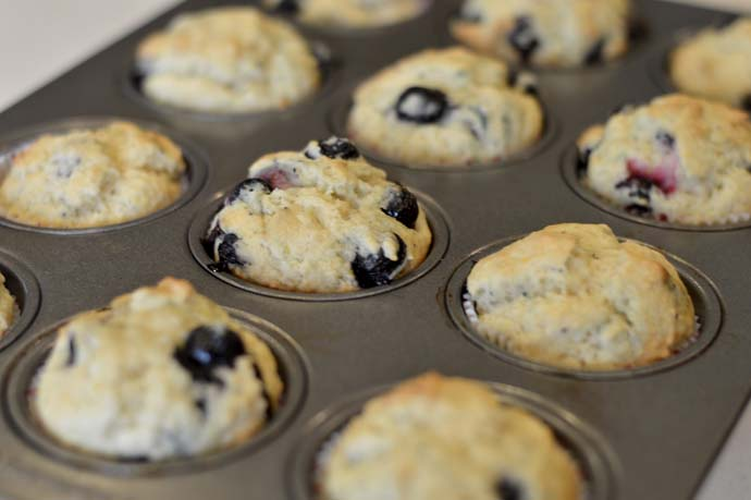 Easy Blueberry Muffin Recipe @rachmccarthy7