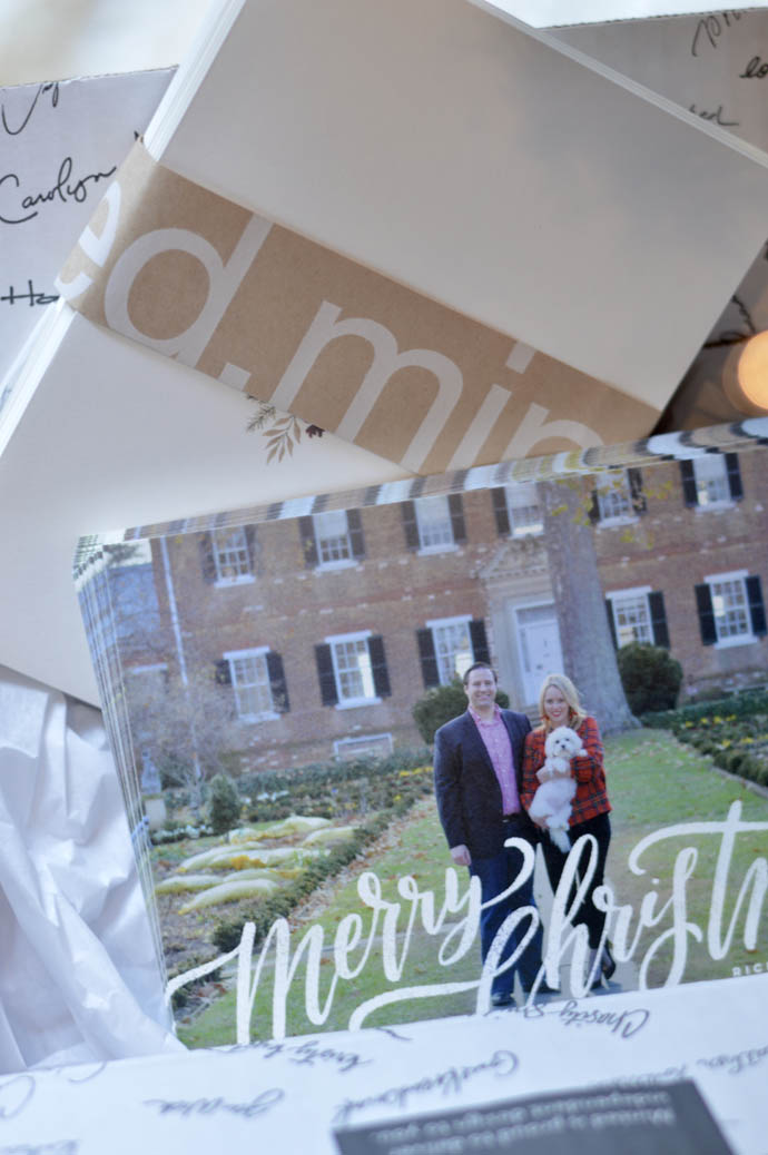 minted christmas cards review 1