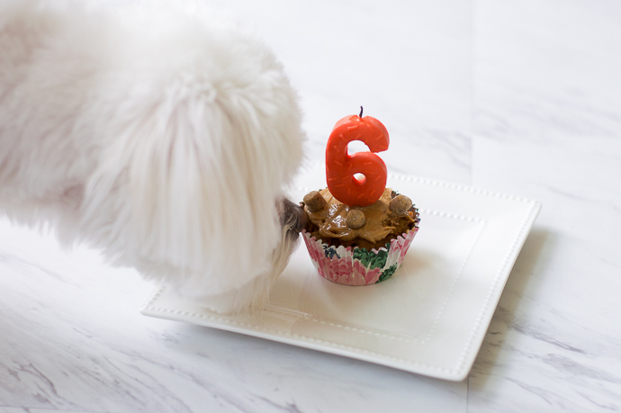 Fabulous Ellas Birthday Pupcakes A Blondes Moment Personalised Birthday Cards Arneslily Jamesorg